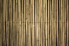 La brande de bruyère épaisse : la nouvelle clôture à la mode